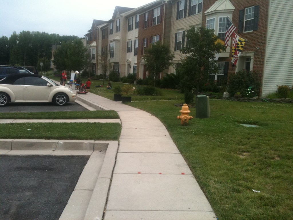 Figure 1 Recipients of BHMP subsidies were relocated to this housing development in Harford County, MD.