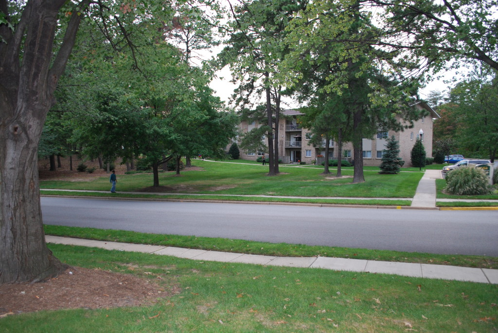 Figure 3 A tree-lined street in Anne Arundel County where BHMP families from Baltimore City were relocated.